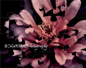 Deep Rose Magnificance, Puzzle, L Side Watermark; Ex18Hi12Sh12