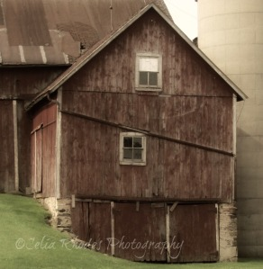 Barn Detail, Sepia+ORton, S-45T+20, Watermark       Home and Away July 1 2014 271