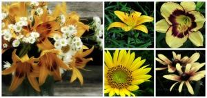 PicMonkey Collage, Yellow