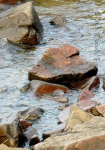 Heart-Shaped Rock