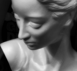 Classical Beauty II, E35, Crop, Watermark       Harvest Fest Sep 20-22 2014 087