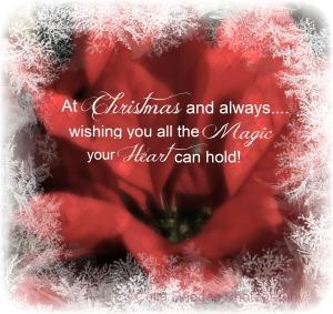 Christmas Magic, Watermark       Poinsettia, Ex -32 H15; B&W F65   IMG_1339 (3)