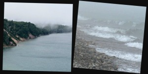 2 Fog Images, Watermark               Ribbet collage