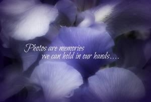 Blue Petals, Memories Poster, Vig70, Watermark      More clematis, Irises, et al 5-28-2014 029