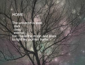 Home III, Watermark , Corrected          Tree with Pearly  Night Sky, Ex19+Bokeh      IMG_0666 (2)