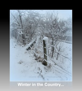 winter-in-the-country-ref-frame-caption-watermark-img_1817-2